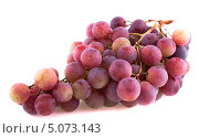 Купить «Гроздь красного винограда, изолированно на белом фоне», фото № 5073143, снято 7 сентября 2013 г. (c) Литвяк Игорь / Фотобанк Лори