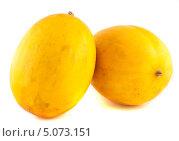 Купить «Две жёлтые дыни изолированно на белом фоне», фото № 5073151, снято 7 сентября 2013 г. (c) Литвяк Игорь / Фотобанк Лори