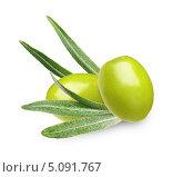 Купить «Зелёные оливки с листьями», фото № 5091767, снято 18 августа 2013 г. (c) Валентина Разумова / Фотобанк Лори