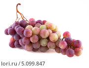 Купить «Гроздь винограда, изолированно на белом фоне», фото № 5099847, снято 7 сентября 2013 г. (c) Литвяк Игорь / Фотобанк Лори
