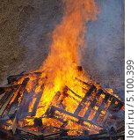 Купить «Большой костер  - горящее дерево», фото № 5100399, снято 29 сентября 2013 г. (c) SevenOne / Фотобанк Лори