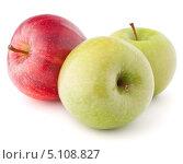 Купить «Одно красное и два зеленых яблока. Изолировано на белом фоне», фото № 5108827, снято 13 марта 2012 г. (c) Natalja Stotika / Фотобанк Лори