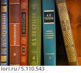 Купить «Классическая литература», фото № 5110543, снято 25 августа 2013 г. (c) Старостин Сергей / Фотобанк Лори