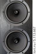 Купить «Черная акустическая система», фото № 5113667, снято 15 сентября 2013 г. (c) Владислав Осипов / Фотобанк Лори