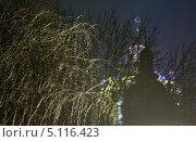 Купить «Деревья, покрытые льдом, в городском парке ночью», фото № 5116423, снято 24 января 2013 г. (c) Юрий Брыкайло / Фотобанк Лори