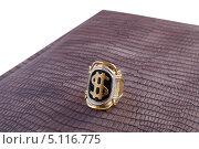 Купить «Перстень с изображением знака доллара», эксклюзивное фото № 5116775, снято 8 августа 2013 г. (c) Blekcat / Фотобанк Лори