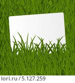 Купить «Фон с зеленой травой», иллюстрация № 5127259 (c) Евгения Малахова / Фотобанк Лори