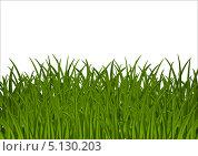 Купить «Фон с зеленой травой», иллюстрация № 5130203 (c) Евгения Малахова / Фотобанк Лори