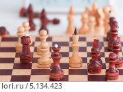 Купить «Шахматы», фото № 5134423, снято 7 марта 2013 г. (c) Литвяк Игорь / Фотобанк Лори