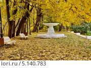 Купить «Осень в Нескучном саду, Москва», фото № 5140783, снято 10 октября 2013 г. (c) Илюхина Наталья / Фотобанк Лори