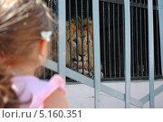 Девочка и лев. Стоковое фото, фотограф Григорий Аванесян / Фотобанк Лори