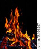 Купить «Огонь костра на черном фоне», фото № 5164567, снято 30 августа 2013 г. (c) Татьяна Козырева / Фотобанк Лори