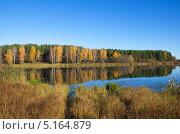 Купить «Река Скорогодайка осенью», эксклюзивное фото № 5164879, снято 14 октября 2013 г. (c) Елена Коромыслова / Фотобанк Лори