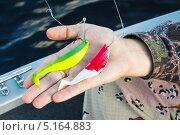 Силиконовая приманка рыбка для ловли хищной рыбы. Стоковое фото, фотограф Антон Журавков / Фотобанк Лори
