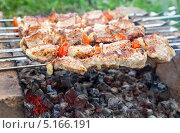 Купить «Приготовление шашлыка на импровизированном мангале из кирпичей», фото № 5166191, снято 1 августа 2013 г. (c) FotograFF / Фотобанк Лори