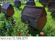 Купить «Пасека солнечным летним днем. Абхазия», фото № 5166671, снято 11 августа 2013 г. (c) Григорий Писоцкий / Фотобанк Лори