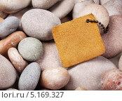Кожаная этикетка лежит на камнях. Стоковое фото, фотограф Алексей Лукин / Фотобанк Лори