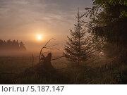 Восход над полем. Стоковое фото, фотограф Ермихина Оксана / Фотобанк Лори