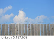 Забор с колючей проволокой. Стоковое фото, фотограф Максим Адылшин / Фотобанк Лори