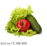 Помидор, огурец и зелёный салат, изолированно на белом фоне. Стоковое фото, фотограф Natalja Stotika / Фотобанк Лори