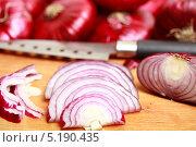 Купить «Нарезанный дольками красный лук на деревянной разделочной доске», эксклюзивное фото № 5190435, снято 10 октября 2013 г. (c) Яна Королёва / Фотобанк Лори