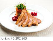 Купить «Жареное филе утиной грудки с салатом и брусничным соусом», фото № 5202863, снято 12 октября 2013 г. (c) Alexander Tihonovs / Фотобанк Лори
