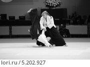Выступление мастеров айкидо (2013 год). Редакционное фото, фотограф Анатолий Дьяков / Фотобанк Лори