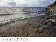 Купить «Рыбинское водохранилище», эксклюзивное фото № 5213759, снято 25 октября 2013 г. (c) Gagara / Фотобанк Лори