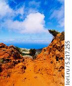 Купить «Горы Тено на Тенерифе, Канарские острова», фото № 5217255, снято 13 сентября 2011 г. (c) Karol Kozlowski / Фотобанк Лори