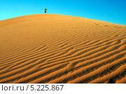 Фигура человека на вершине песчаной дюны (2009 год). Стоковое фото, фотограф Kate Chizhikova / Фотобанк Лори