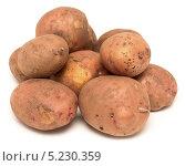 Купить «Сырой картофель», фото № 5230359, снято 29 октября 2013 г. (c) Насыров Руслан / Фотобанк Лори