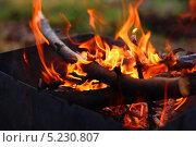 Огонь в мангале. Стоковое фото, фотограф Роман Лапшин / Фотобанк Лори