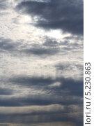 Перед дождём. Стоковое фото, фотограф Роман Лапшин / Фотобанк Лори