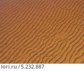 Купить «Песчаное дно реки Волхов», эксклюзивное фото № 5232887, снято 3 мая 2013 г. (c) Михаил Карташов / Фотобанк Лори