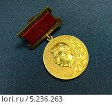 Купить «Сталинская премия», фото № 5236263, снято 29 января 2011 г. (c) Анна Воронова / Фотобанк Лори