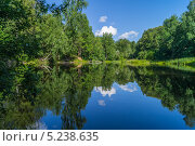 Зеркало лета, лесное озеро. Стоковое фото, фотограф Аркадий Рыпин / Фотобанк Лори