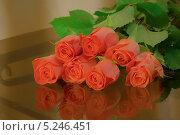 Купить «Букет роз», фото № 5246451, снято 26 октября 2013 г. (c) Алексей Назаров / Фотобанк Лори