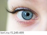 Голубой женский глаз. Стоковое фото, фотограф Ekaterina Klementyeva / Фотобанк Лори