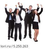 Купить «бизнесмены радостно машут руками», фото № 5250263, снято 12 мая 2013 г. (c) Андрей Попов / Фотобанк Лори