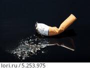Купить «окурок сигареты на черном фоне», фото № 5253975, снято 9 мая 2013 г. (c) Андрей Попов / Фотобанк Лори