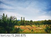 Купить «Пейзаж Таиланда», фото № 5260875, снято 21 января 2012 г. (c) Петр Малышев / Фотобанк Лори