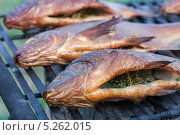 Купить «Рыба горячего копчения», фото № 5262015, снято 26 февраля 2020 г. (c) FotograFF / Фотобанк Лори