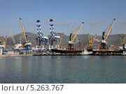 Торгово-морской порт в Новороссийске (2013 год). Редакционное фото, фотограф Валерий Князькин / Фотобанк Лори