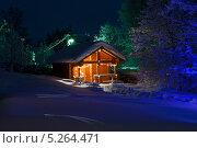 Новогодний пейзаж. Стоковое фото, фотограф Светлана Микитанская / Фотобанк Лори