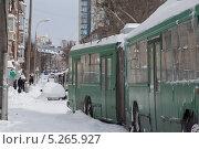 Троллейбусы стоят в снежном заносе. Стоковое фото, фотограф Александров Алексей / Фотобанк Лори