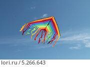 Купить «Воздушный змей в небе», эксклюзивное фото № 5266643, снято 6 июля 2013 г. (c) Михаил Рудницкий / Фотобанк Лори