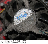 Купить «Грязный вентилятор процессора», эксклюзивное фото № 5267175, снято 4 июля 2020 г. (c) Михаил Рудницкий / Фотобанк Лори