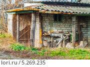 Купить «Старый сарай», фото № 5269235, снято 9 ноября 2013 г. (c) Сергей Парантаев / Фотобанк Лори
