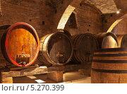 Купить «Бочки для выдержки вин  в старинном погребе», фото № 5270399, снято 28 сентября 2013 г. (c) Виктория Катьянова / Фотобанк Лори