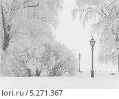 Купить «Зимний пейзаж с фонарём. Санкт-Петербург. Заячий остров», фото № 5271367, снято 10 января 2010 г. (c) Людмила Жмурина / Фотобанк Лори